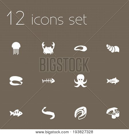 Set Of 12 Sea Icons Set.Collection Of Devilfish, Acne, Sink And Other Elements.