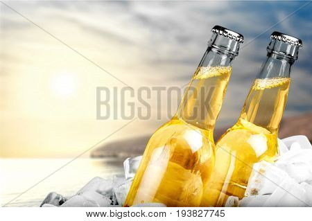 Cold bottles beer bar pub yellow nobody