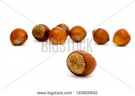 Hazelnuts in the foreground on a white background