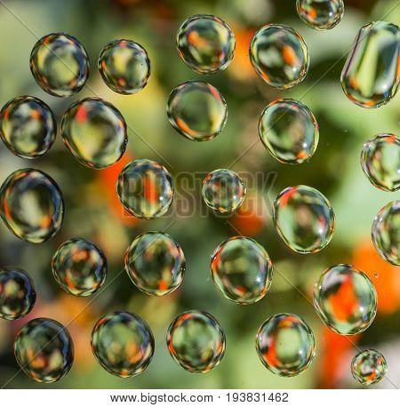 water drops on window with overlooking the garden