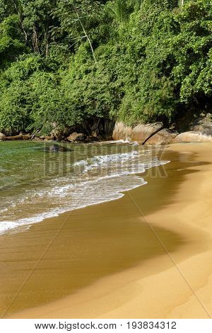 Deserted and unspoilt beach with its limpid and transparent waters that meet the rainforest