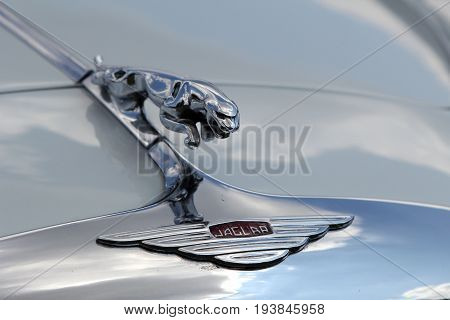 Sandhurst, Uk - June 18 2017: Jaguar Leaping Cat Bonnet Mascot Or Emblem On A Vintage Jaguar Car