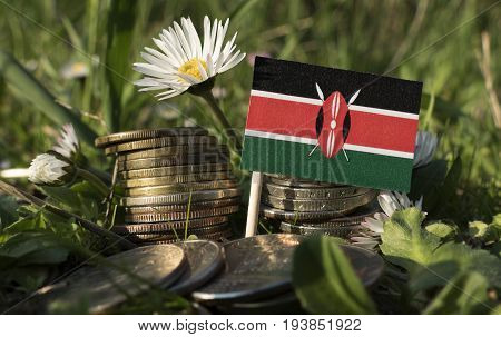 Kenyan Flag With Stack Of Money Coins With Grass And Flowers