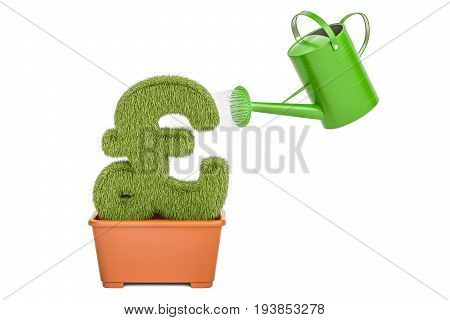 Watering can water grassy pound sterling symbol. Money plant concept 3D rendering