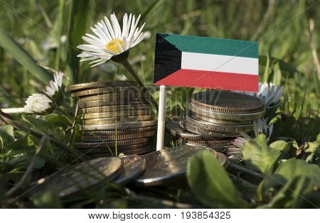Kuwaiti Flag With Stack Of Money Coins With Grass And Flowers
