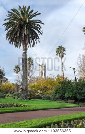Albert Park in winter with palm trees and Auckland University Clock Tower New Zealand NZ