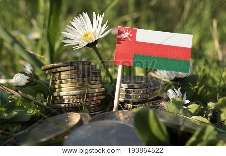 Omani Flag With Stack Of Money Coins With Grass And Flowers