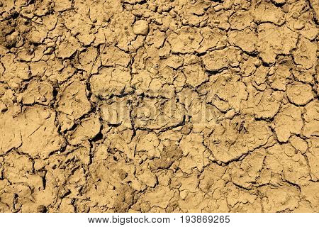 Dried mud dirt drought parched ground