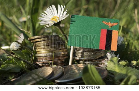 Zambia Flag With Stack Of Money Coins With Grass And Flowers