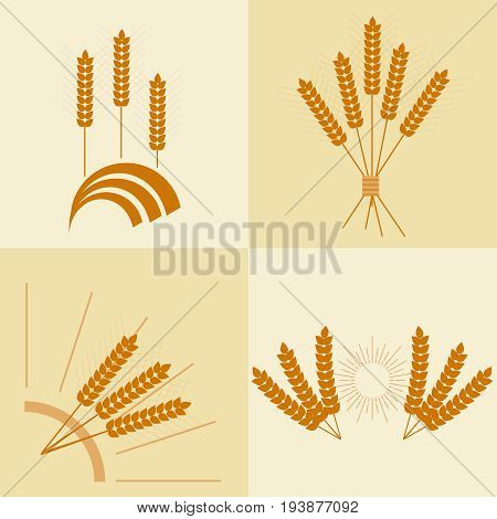 Wheat ears eco products wheat ear icon. Flat design vector illustration vector.