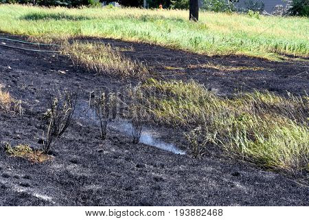 Smoke rising from burned field of grass