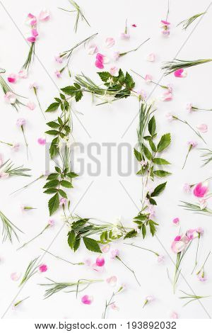 Flowers composition. Frame made of pink carnation flowers rose petals needle-shaped and big astilba green leaves on white background. Flat lay top view.