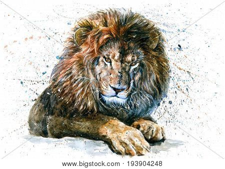 Lion King, watercolor, predator, animals, painting, wildlife