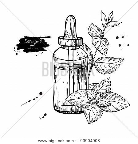 Mint essential oil bottle and peppermint leaves hand drawn vector illustration. Isolated plant drawing for Aromatherapy treatment, alternative medicine, beauty and spa, cosmetic ingredient.