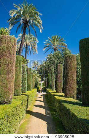 Gardens At The Alcazar, Seville, Andalucia, Spain