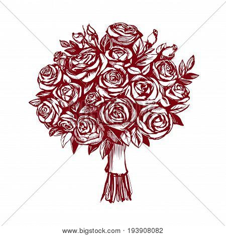 bouquet of roses, greeting card hand drawn vector illustration realistic sketch