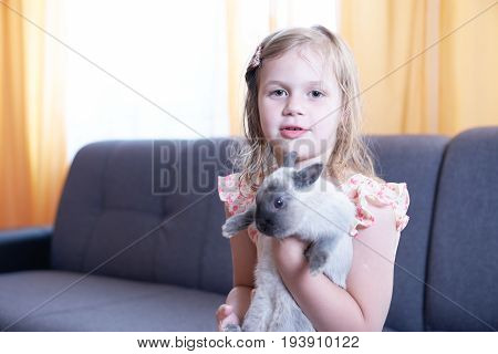 Little girl plying with rabbit at home