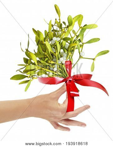 a hand holding christmas mistletoe isolated on white