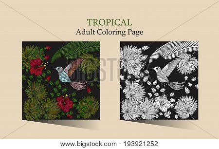 Vector ilustration with flowers of tropical hibiscus and fantasy hummingbird. Adult antistress coloring page .