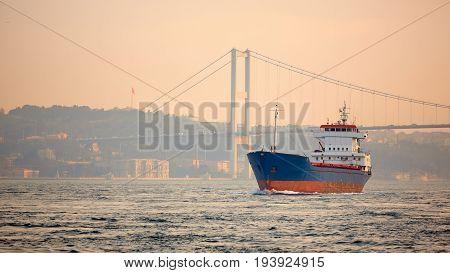 A cargo ship in the Bosphorus, Istanbul, Turkey