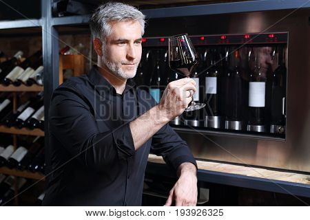 wine cooler. Red wine, man evaluates the color of wine in a glass
