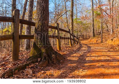 The footpath with fence tree trunk and thicket in the Providence Canyon State Park in sunny autumn day Georgia USA
