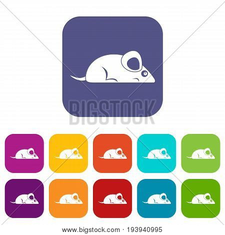 Pet mouse icons set vector illustration in flat style In colors red, blue, green and other