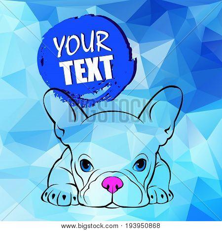 bulldog dog animal french vector illustration pet breed cute drawing