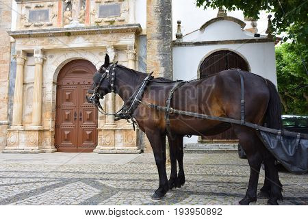 Horse carts shown on the main square of medieval town of Obidos church of Santa Maria at background. Horse cart riding very popular tourist attraction in Obidos