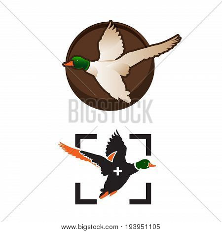 Wild ducks fly. Duck Hunting Mallard duck flies. Icon logo. Vector illustrations