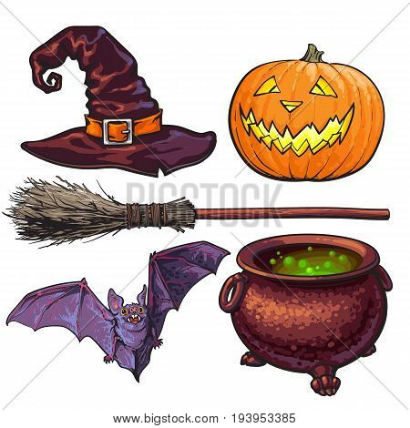Witch accessories - pointed hat, caldron, jack o lantern, broom, bat, Halloween decoration elements, sketch vector illustration isolated on white background. Set of hand drawn witch, Halloween objects