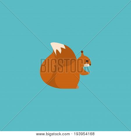 Flat Icon Squirrel Element. Vector Illustration Of Flat Icon Chipmunk Isolated On Clean Background. Can Be Used As Chipmunk, Squirrel And Nut Symbols.