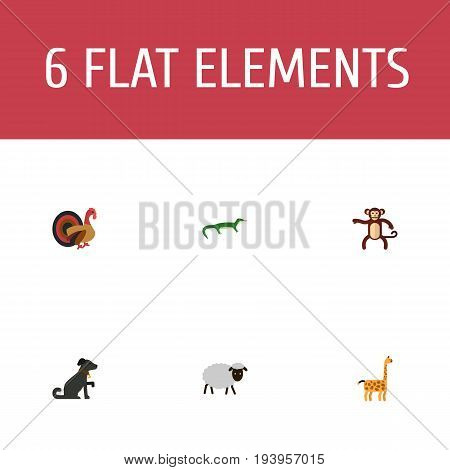 Flat Icons Reptile, Camelopard, Chimpanzee And Other Vector Elements. Set Of Alive Flat Icons Symbols Also Includes Monkey, Gecko, Camelopard Objects.