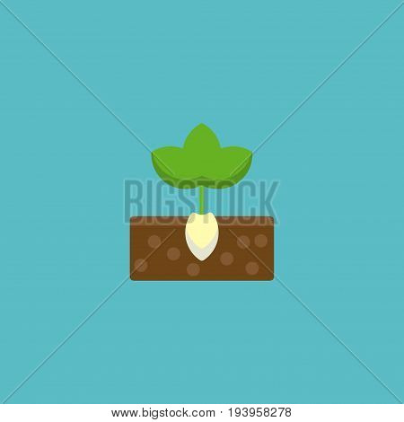 Flat Icon Plant Element. Vector Illustration Of Flat Icon Sprout Isolated On Clean Background. Can Be Used As Plant, Sprout And Gardening Symbols.