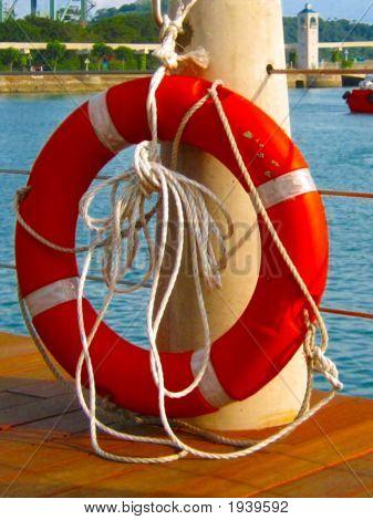 Float Life Saver Portrait