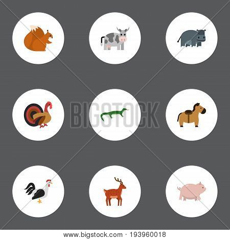 Flat Icons Rooster, Reptile, Gobbler And Other Vector Elements. Set Of Animal Flat Icons Symbols Also Includes Chipmunk, Hippo, Deer Objects.