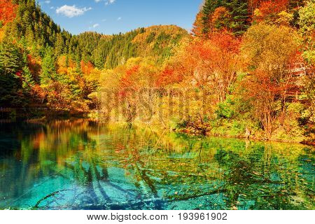 Autumn Woods Reflected In Azure Water Of The Five Flower Lake
