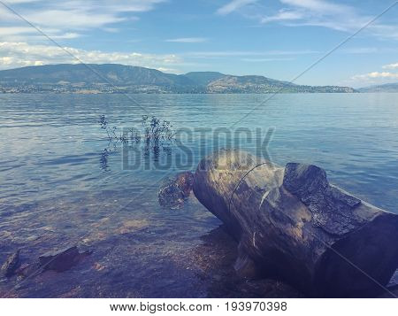 Lake Landscape View With Log On Shore