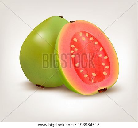 Fresh green Guava fruit . Vector illustration.