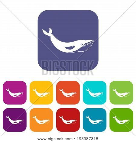 Whale icons set vector illustration in flat style In colors red, blue, green and other