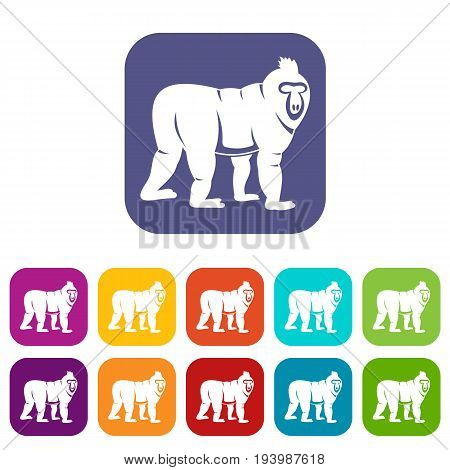 Mandrill monkey icons set vector illustration in flat style In colors red, blue, green and other