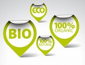Set of green tags for organic, natural, eco, bio food poster