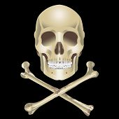 Human Skull and crossbones on a black background poster