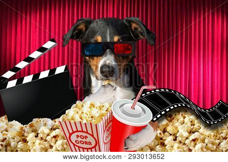 Appenzeller Dog Watching A Movie In A Cinema Theater, With Soda And Popcorn Wearing 3d Glasses