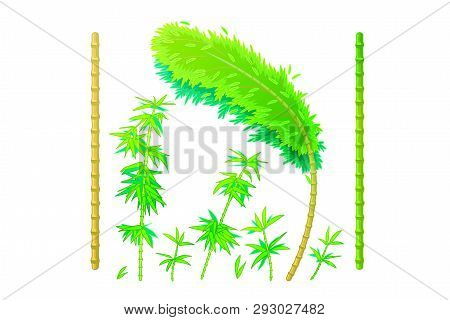Vector Cartoon Plants Nature Clip Art. Green Bamboo