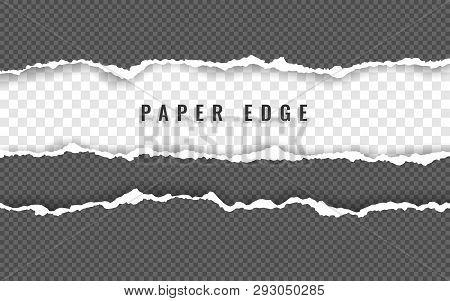 Torn Paper Edge  Torn Vector & Photo (Free Trial) | Bigstock