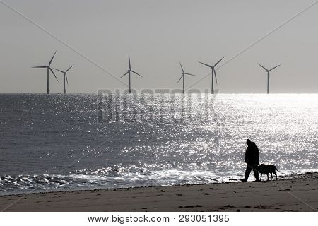 Loneliness And Solitude. Peaceful Landscape Image Of Lonely Person Walking A Dog. Mans Best Friend.