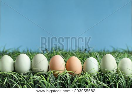 Natural Colored Easter Eggs In Grass Against A Blue Background With Room For Copy Space.