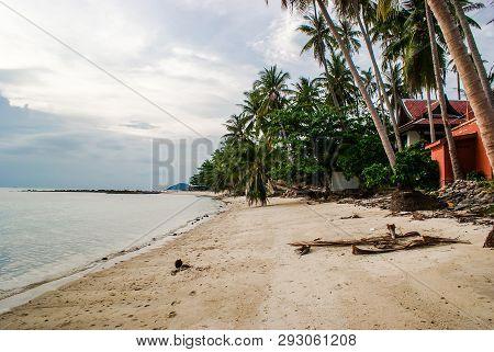 Palm Trees On Taling Ngam Beach. Koh Samui Island. Thailand.
