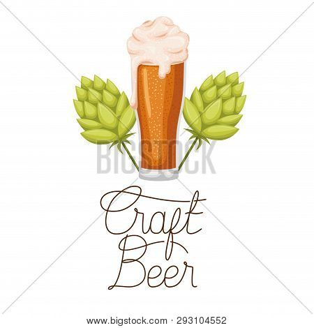 Craft Beer Label With Glass And Pinecone Vector Illustration Design
